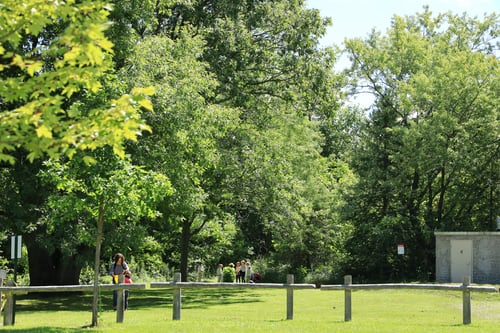 The-Latin-Quarter-Luxembourg-park